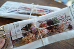 Xmas dried & preserved flower pac 【FOREST】