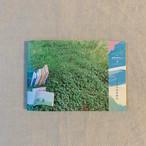 ideallife with plants 〜植物はたのしい。〜 8号「しょくぶつのえほん」(送料込)