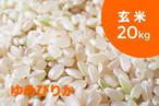 【令和元年産】特別栽培米 ゆめぴりか(玄米)20kg