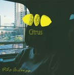 The Whoops / Citrus
