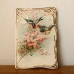 小鳥のカード(バラ)/ vp0014