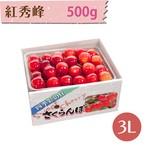 【さくらんぼ】紅秀峰 500g【3L】