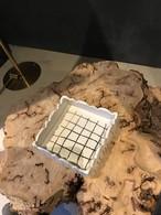 畑中圭介 角型小鉢