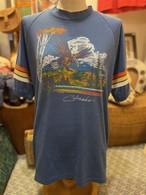 80s ビンテージ イーグル アメリカ tシャツ USA アウトドア