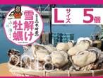 【雪解け牡蠣】生食用殻付き牡蠣  Lサイズ(5個)