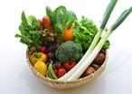 大分県産野菜セット ※送料込み(運賃値上げにより改訂) 農薬不使用・化学肥料肥料不使用/減農薬