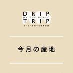 DRIP TRIP 今月の産地・コスタリカ!|200g(クリックポスト対応)