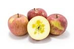 葉取らずサンふじ 小箱 ギフト用 | りんごの王様がさらに美味しく