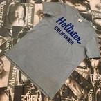 HOLLISTER MENS Tシャツ Lサイズ