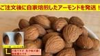素焼きアーモンド450g(割れ欠けあります) ご注文後に自家焙煎&発送 送料無料