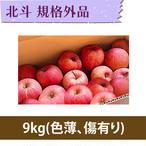 【りんご】北斗 9kg【規格外品】