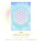 フラワー・オブ・ライフ 【神聖幾何学エネルギーカード】F-01