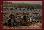 ZINE『80年目のアーチ橋』