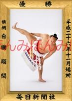 平成26年11月場所優勝 横綱 白鵬翔関(32回目の優勝)