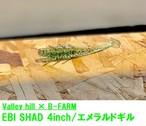 EBI SHAD4 B-FARMオリジナルカラー【エメラルドシャッド】