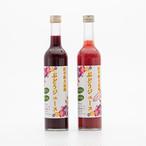 岩手県大迫産ぶどうジュース 2本セット