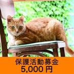 保護活動募金 5000円
