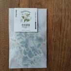 和紙&トレペシールセット 植物