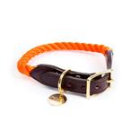 FOUND MY ANIMAL-RESCUE ORANGE ROPE & LEATHER CAT & DOG COLLAR(ファウンドマイアニマル・レスキューオレンジ・ロープ・キャット&ドッグカラー)