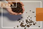 白山氷室 コーヒー豆 (エチオピアモカシダモ)