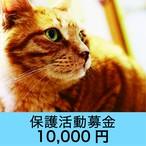 保護活動募金 10000円