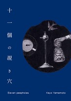 十一個の覘き穴/山本佳世コラージュ作品集