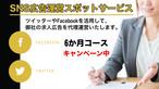 SNS広告運営スポットサービス 6ケ月