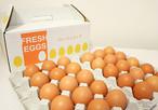 福地鶏の卵 30個セット(58g~70g)
