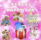 HAPPY BAG おソロで 6枚 12000円