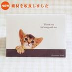 猫 障害者手帳カバー アビシニアン イラスト A