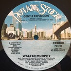 Walter Murphy ‎– Gentle Explosion / Dance Your Face Off