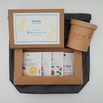夏のチョコレートセット(送料無料)