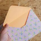 rice 封筒セット 〇キュートな封筒6枚セット