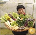 【M】季節のお野菜 おまかせボックスMサイズ