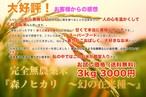 特別お試し価格!大好評の完全無農薬玄米『森ノヒカリ ~幻の在来種~』 送料無料 玄米3kg