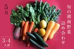 旬の湘南野菜 お得な詰め合わせセット《3〜4人用》
