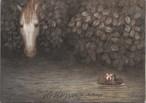 サイン入りポストカード<白い馬と川を流れるハリネズミ>