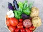 季節の野菜セット(チルド料金660円含む)
