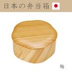 日本の弁当箱 梅 790449 日本製