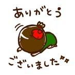 【K様専用】ご購入ページ