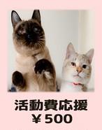 活動費応援 ¥500