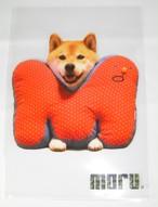 柴犬まる A4クリアファイル M字クッションまる(クリア)