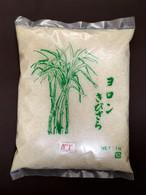 与論島産キビザラメ2021年度産(5個セット) ※新糖入荷
