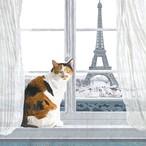 入荷しました|2020春夏【Paperproducts Design】バラ売り2枚 ランチサイズ ペーパーナプキン Madeleine à Paris ホワイト