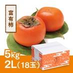 富有柿 2L 18玉(5kg)