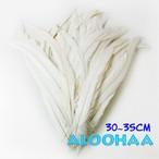 ロングフェザー【白(ナチュラル)】30-35cm 10本 DIY 羽 衣装材料 タヒチアン
