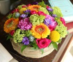 Flower Arrangement 「cheer」