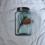 【海苔瓶】泡ガラス 大瓶 菓子瓶