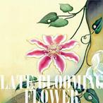 CD ミニアルバム「遅咲きの花」