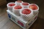 桃(千種白鳳 ちくさはくほう)2kg
